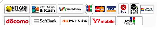 「NET CASH」「BitCash」「WebMoney」「JCB」「Master Card」「VISA」「楽天Edy」「(モバイル)Suica」「ドコモケータイ払い」「ワイモバイルまとめて支払い」「リクルートかんたん支払い」